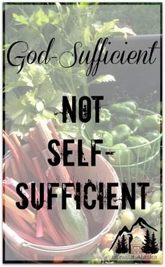 Homesteaders, are you self-sufficient or God-sufficient? Stop relying on…