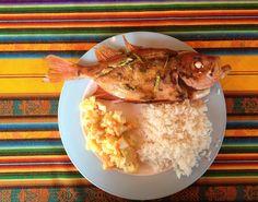 Catalana, ensalada y arroz en la Isla de Margarita: Venezuela