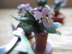 Pikkutiellä Mini, Plants, Blog, Blogging, Plant, Planets