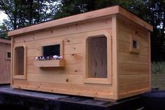Framed with 2x4s...and how could a dog house be complete without a flower box?