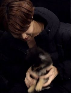 Bts fluff one shots 〰️ J Hope Gif, Bts J Hope, Jimin, Bts Bangtan Boy, Gwangju, Bts Dogs, Pet Sitter, Frases Bts, V Taehyung