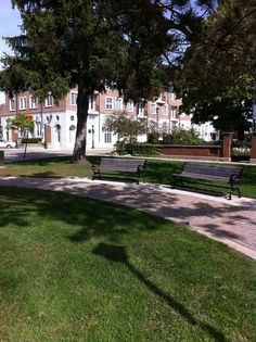 Park In Plymouth Michigan Fall 2014