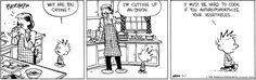 Calvin & Hobbes 5/7/15