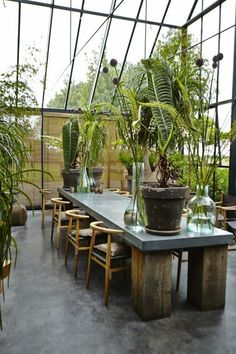 Home decoration outdoor backyard romantic bohemian outdoor space backyard space plants and green house outdoor living Outdoor Gardens, Indoor Outdoor, Outdoor Living, Shed Design, House Design, Wooden Greenhouses, Deco Nature, Greenhouse Plans, Greenhouses