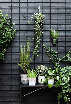 Urban Garden | Metal frame for a graphic way to hook pots