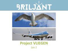 Parrot, Bird, Animals, School Ideas, Paper Art, Parrot Bird, Animales, Animaux, Parrots