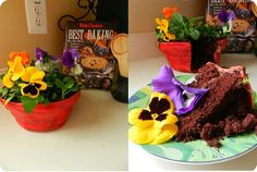 Check out this Edible Chocolate Flowerpot Cake! at http://makeitorfixit.com