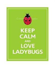 KEEP CALM AND LOVE LadyBugs❤