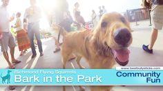 Bark in the Park at the #Richmond Flying Squirrels baseball diamond! #RVA #dogevents #baseball