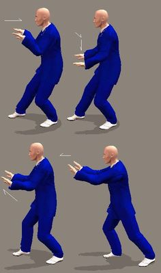 Tai Chi 108 Form Tutorial. Yang family Tai Chi. Tai Chi Steps, Tai Chi Posture Online Guide