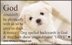 God couldn't be physically with us so he gave us dogs. Notice - Dog spelled backwards is God, and they both show unconditional love. Dog Quotes, Animal Quotes, Life Quotes, Qoutes, I Love Dogs, Puppy Love, Cute Dogs, Schnauzers, Dachshunds
