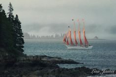 A personal favorite from my Etsy shop https://www.etsy.com/listing/226884117/the-schooner-notecard