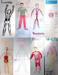 """Ihminen - ryhmä- / parityönä ihmisen """"faktat"""" luonnollisessa koossa. My Future Job, Human Body, Teacher, School, Professor, The Human Body"""