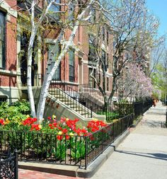 Apartments with wrought iron fencing surrounding small garden front yard fence pictures landscaping ideas designs