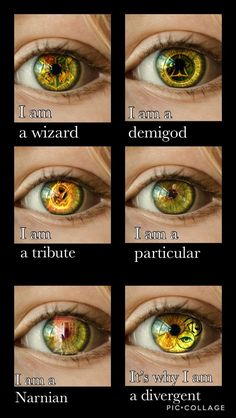 I'm also a maze runner, shadow hunter and several other things too 😁😁… - Geek Stuff Citations Film, Tribute Von Panem, Fandom Quotes, Fandom Crossover, Percy Jackson Fandom, Chronicles Of Narnia, Book Memes, Harry Potter Memes, Heroes Of Olympus