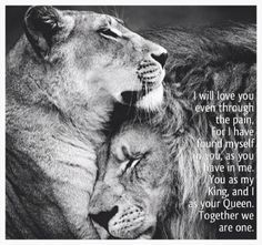 Discover and share Every Queen Needs A Lion King Quotes. Explore our collection of motivational and famous quotes by authors you know and love. King Quotes, Love Quotes, Inspirational Quotes, Couple Quotes, Lioness Quotes, Animals And Pets, Cute Animals, Lion Love, Jolie Photo