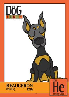 Beauceron from the Herding Group - Dog Breed Trading Cards http://dogbreedtradingcards.tumblr.com/post/20841316878/12-be-beauceron-from-the-herding-group