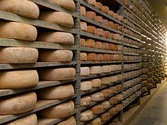 (à gauche : tommes et fromages des Pyrénées en affinage; à droite : Beaufort)