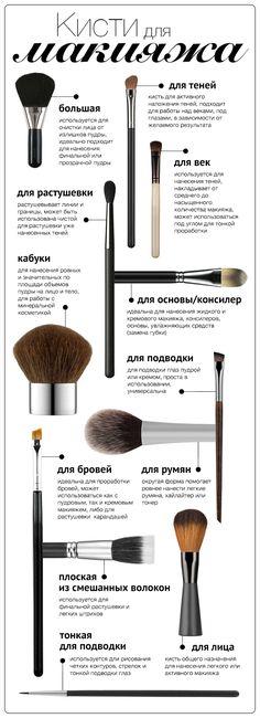 Инфографика: 12 кистей для макияжа - Я Покупаю #makeupideas