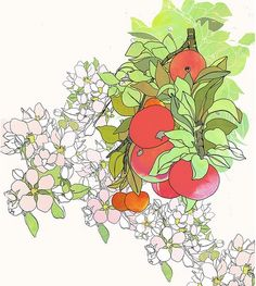 Apple Blossoms Print by Renee Garner on Little Paper Planes