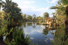 Phoenix Zoo, Phoenix AZ - March 2013