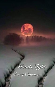 Good Night Blessings, Good Night Wishes, Good Night Sweet Dreams, Good Night Quotes, Moon Pictures, Moon Pics, Good Night Image, God Is Good, Cute Quotes