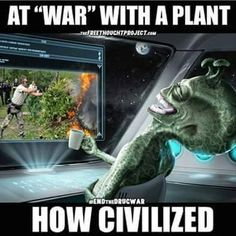 At war with a plant.