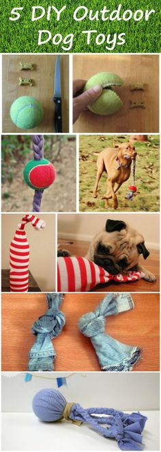 With these simple and effective DIY dog toys, your backyard will be transformed into the ultimate doggy playground!