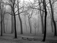 More Black and White Photography Tips