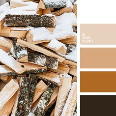 monochrome brown palette palettes with color ideas for decoration your house, wedding, hair or even nails. Beige Color Palette, Brown Color Schemes, Monochromatic Color Scheme, Monochrome Color, House Color Schemes, Deco Nature, Color Balance, Color Inspiration, Inspiration Boards