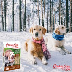 Chicken Soup for the Soul Grain Free Dry Dog Food