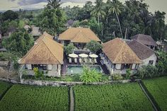 Luxury Villa in the rice field 6BR in Ubud, Bali, Indonesia- D 5*