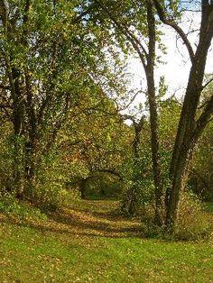McLamarrah Park | Bettendorf, IA