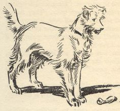 Timmy, from The Famous Five Books by Enid Blyton Famous Five Books, The Famous Five, Drawing Sketches, Dog Sketches, Sketching, Drawings, Children's Book Illustration, Book Illustrations, Kids Reading Books