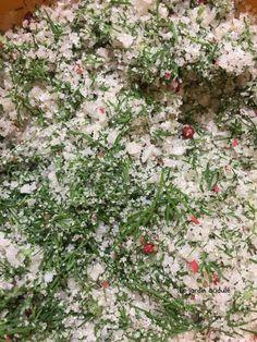 Saumon gravlax - saumon cru mariné à la suédoise. - LE JARDIN ACIDULÉ Mini Tacos, Dire, Plants, Comme, Alternative, Buffet, Pisces, Skinny Kitchen