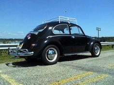 1966 vw bug named Pepper :)