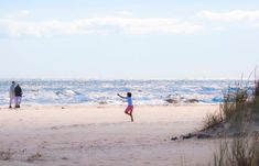 Sandhammaren. Den sandiga kusten i sydöstra Skåne bjuder på en särpräglad natur med stora sanddyner både öppna och skogklädda med tall och ek. Den breda stranden är Sweden, Beach, Pictures, Outdoor, Nature, Photos, Outdoors, The Beach, Seaside