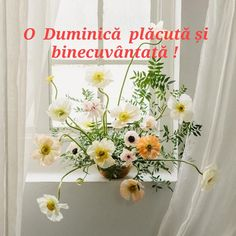 Good Morning, Wreaths, Table Decorations, Buen Dia, Bonjour, Door Wreaths, Deco Mesh Wreaths, Good Morning Wishes, Floral Arrangements
