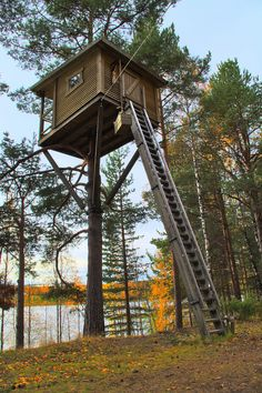 Tree House Outside Harads. A house high in the pine with a stunning view to a lake. Thirty small steps lead the way to this beautiful minimal cabin located just outside Harads, North Sweden. Outside Playhouse, Build A Playhouse, Tree House Plans, Woodland House, Cool Tree Houses, Tree House Designs, Tree Tops, Green Life, In The Tree