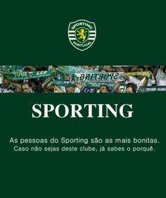 As 65 melhores imagens em Sporting Clube de Portugal  a4d4ee27b7c75