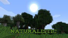 http://www.img3.9minecraft.net/TexturePack/Naturalistic-texture-pack.jpg