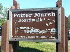 Potter Marsh Wildlife Viewing Boardwalk - Anchorage, AK, United States