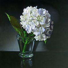 White Hydrangea 10x10 -- M Collier
