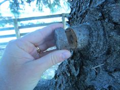 1. Cut a slice of tree limb off 2. Drill a hole in stump 3. Insert log  4. Using a very small drill bit, drill a hole in the slice and another in a corresponding location on the stump, insert a small nail or pin into both holes  5. Close your cache!