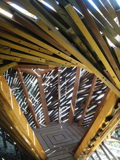 Treeless Treehouse wood trees playgrounds architecture