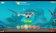 One of the sharks that has great speed, Thresher shark from hungry shark world.