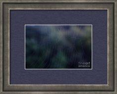 Evening Framed Print featuring the photograph Evening Web by Sverre Andreas… Photograph, Framed Prints, Design, Photography, Design Comics, Fotografie, Fotografia