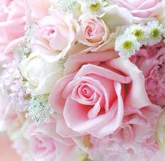 Beautiful Roses..