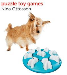 Challenge your dog to a fun puzzle game from Petco's Holiday Gift Guide.