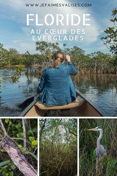 Les Everglades font parties des parcs mythiques des Etats-Unis. Terre des alligators, ce marais géant est le terrain de jeu idéal des amoureux de la nature. A pied, à vélo ou en canoë, tous les moyens sont bons pour profiter des Everglades. #floride #everglades #roadtrip #usa